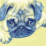 Pug Puppy Pastel Sketch Art Print