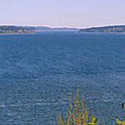 Puget Sound Panoramic Art Print