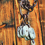 Pulley Hooks And Chain Art Print