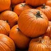 Pumpkin Background Art Print
