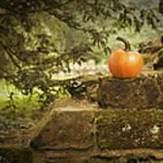 Pumpkin Print by Amanda Elwell