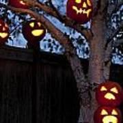 Pumpkin Escape Over Fence Art Print