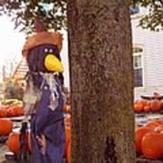 Pumpkin Patch Crow Art Print