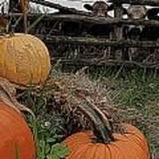 Pumpkin Peepers Art Print