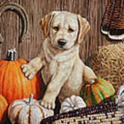 Pumpkin Puppy Art Print