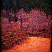 Pumpkin Spice Winter Art Print