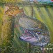 Pumpkinseed Peril Art Print by Charles Weiss