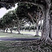 Punchbowl Cemetery - Hawaii Art Print