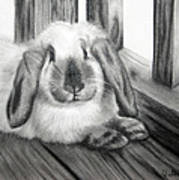 Punky Bunny Art Print