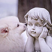 Puppy And Angel  Art Print