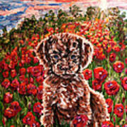 Puppy And Poppies Art Print