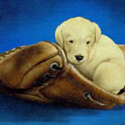 Puppy Glove... Art Print