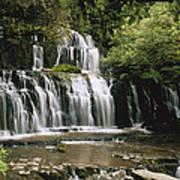 Purakaunui Falls And Tropical Art Print