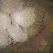 Pure Roses Art Print