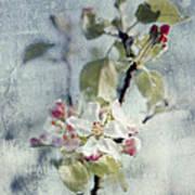 Pure Spring Art Print