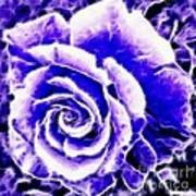 Purple And Blue Rose Expressive Brushstrokes Art Print
