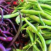 Purple And Green String Beans Art Print