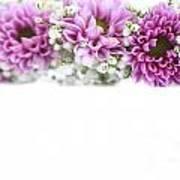 purple and mauve Flower frame on white  Art Print