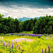 Purple And Mountains And Majesty Art Print
