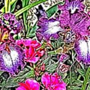 Purple And White Irises And Pink Flowers Art Print