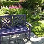 Purple Bench Art Print