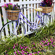 Purple Bicycle And Flowers Art Print