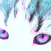 Purple Cat Eyes Art Print