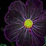 Purple Charisma Art Print