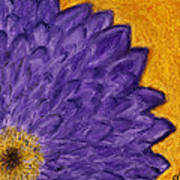 Purple Daisy Art Print