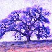 Purple Dreamtime Oak Tree Art Print