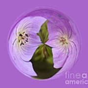 Purple Flower Orb Art Print