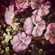 #purple #flowers #ihavenoclue #pretty Art Print