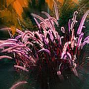 Purple Fountain Grass Fantasy Art Print