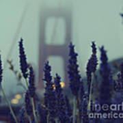Purple Haze Daze Art Print