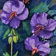 Purple Hibiscus Art Print