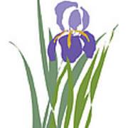Purple Iris Stylized Art Print