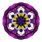 Purple Pansy II Flower Mandala White Art Print