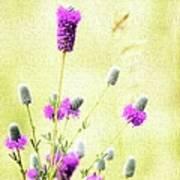 Purple Passion Texture Art Print