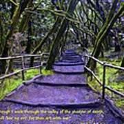 Purple Path Through The Valley Art Print