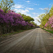 Purple Road Art Print