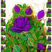 Purple Roses From The Garden 2 Art Print