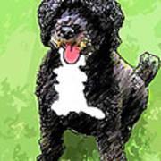 Pw Dog Art Print