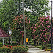 Quaint Park In Demopolis Alabama Art Print