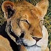 Queen Of The African Savannah Art Print