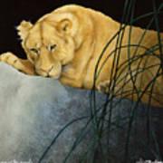 Queen Of The Jungle... Art Print