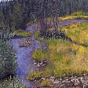 Quiet Creek Art Print