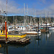 Quiet Time At The Harbor Art Print