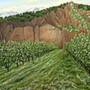 Quince Trees Art Print