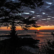 Quoddy Sunrise Art Print by Marty Saccone