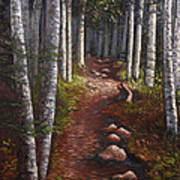 Quoddy Trail Close Crop Art Print